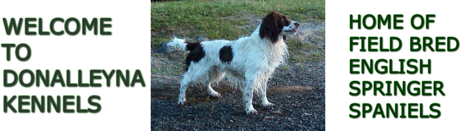 Donalleyna Kennels - Home